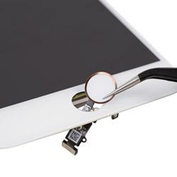 Замена кнопки Хоум Айфон 7 Plus